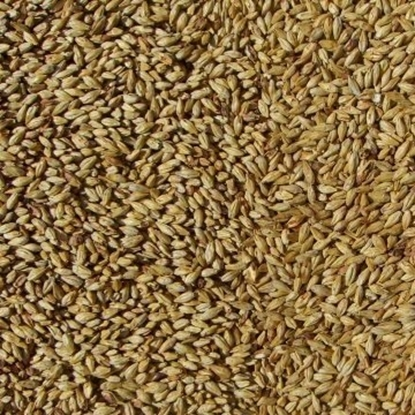 Picture of Caraamber&reg Malt (Weyermann&reg)