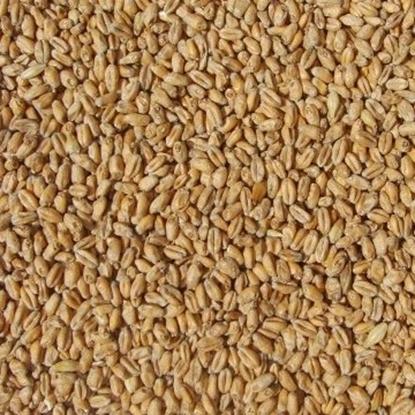 Picture of Wheat Malt Pale (Weyermann)