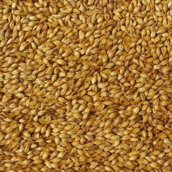 Picture of Carared Malt (Weyermann)
