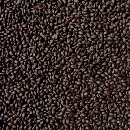 Picture of Barley Roasted - Unmalted (Bairds)