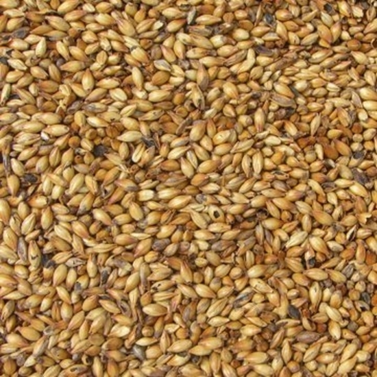 Picture of Crystal Malt Medium (Bairds)