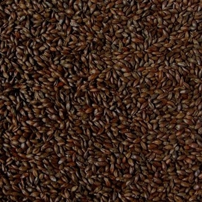 Picture of Black Malt (Bairds)