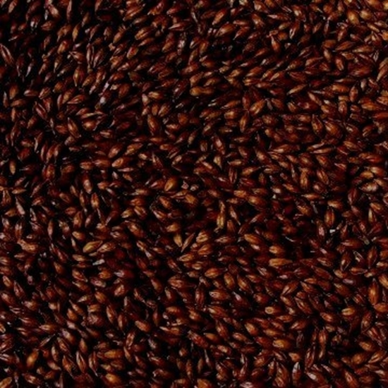 Picture of Chocolate Malt (Bairds)