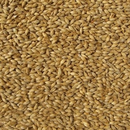 Picture of Smoked Malt -  Bestmalz (Best Malt)