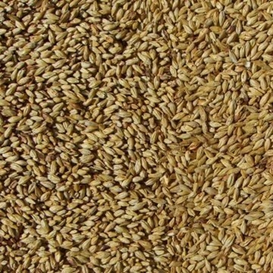 Picture of Amber Malt (Bairds)