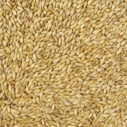 Picture of Pilsner Malt Organic (Weyermann) (ORGANIC)