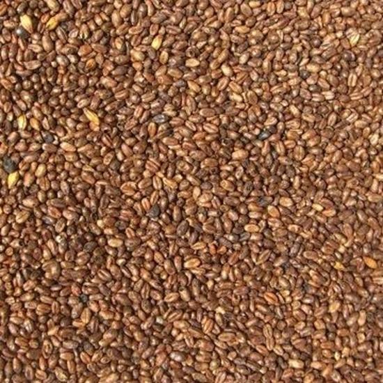 Picture of Wheat Caramel Malt (Weyermann)