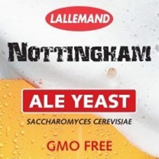 2 Packs Danstar Yeast Nottingham English Ale