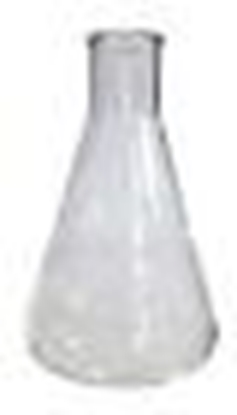 Picture of Erlenmeyer Flask 3L (New Larger Size)